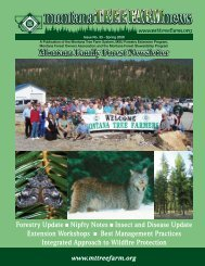 Montana Family Forest Newsletter - Montana Tree Farm System