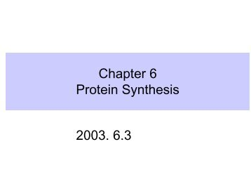 Chapter 6 Protein Synthesis 2003. 6.3 강의분