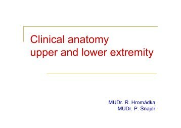 Clinical anatomy upper and lower extremity