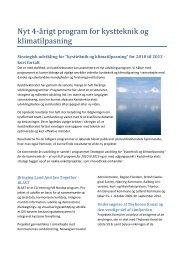 Nyt 4-Ã¥rigt program for kystteknik og klimatilpasning - dancore