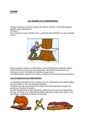 Ecologie Les dangers de la déforestation - Enseignons.be