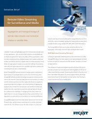 Remote Video Streaming for Surveillance and Media - Storage ...