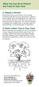 Love the Trees in Your Yard - Page 2