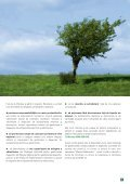 Raport anual - Recolamp - Page 7