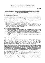 Anlage Beschluss Fünfjahresprogramm