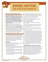 African Cat Behavioral Adaptations - Go.com