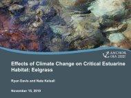 Effects of Climate Change on Critical Estuarine Habitat: Eelgrass
