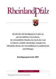 Beteiligungsbericht 2007 - Finanzministerium Rheinland-Pfalz