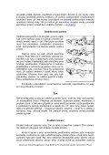 Poskytnutí první pomoci při úrazu - Vítejte na stránkách BOZP a PO - Page 3
