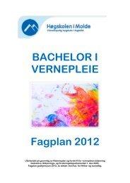 BACHELOR I VERNEPLEIE Fagplan 2012 - Høgskolen i Molde