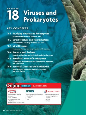 18.1 Studying Viruses and Prokaryotes