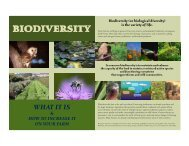 Biodiversity on the farm