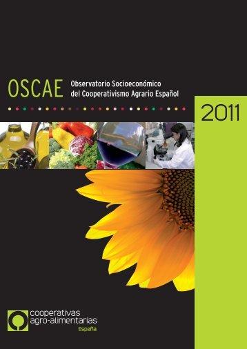 OSCAE OBSERVATORIO SOCIOECONóMICO DEL ...