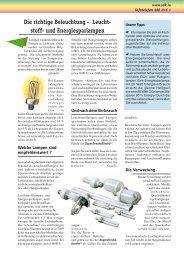 Die richtige Beleuchtung - Leucht- stoff- und Energiesparlampen