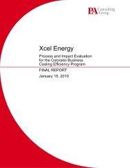 Xcel Report FINAL 1_15_10 - Xcel Energy