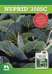 12491-NUF Nuprid 350SC Brochure_V3.indd - Pest Genie