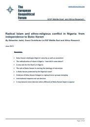 Radical Islam and ethno-religious conflict in Nigeria - The European ...