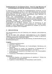 Qualitätsstandards für den Übergang Schule Beruf - Verband ...