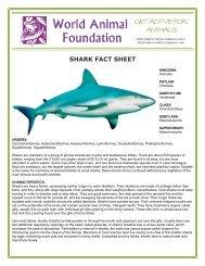 SHARK FACT SHEET - World Animal Foundation