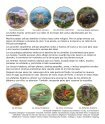 Para las mentes creativas - Sylvan Dell Publishing - Page 2