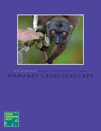 MAMABAY LAND/SEASCAPE - Wildlife Conservation Society