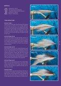 Bush Pig - Fly Angler Australia - Page 2