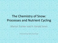 The Chemistry of Snow: Processes and Nutrient Cycling