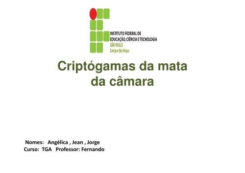Briófitas - Fernando Santiago dos Santos