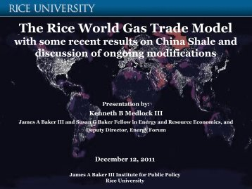 Rice World Gas Trade Model - James A. Baker III Institute for Public ...