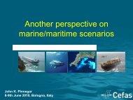 Another perspective on marine/maritime scenarios - meece