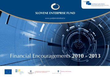 Promoting small and medium-sized enterprises with equity and debt ...