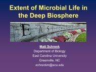 Advances in understanding the deep biosphere - iodp