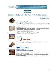 Secteur : Industries du Cuir et de la Chaussure ... - Tunisie industrie