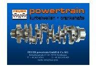 FEUER powertrain GmbH & Co. KG