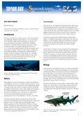The grey nurse - Page 2