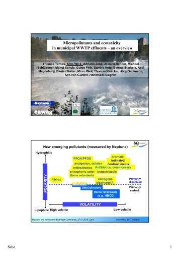 Micropollutants and ecotoxicity in municipal WWTP effluents – an ...
