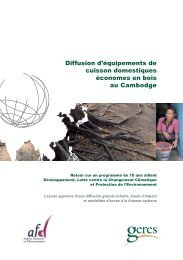 Publi_NLS_FR - RIAED | Réseau international d'accès aux énergies ...