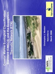 Benthic Cover Classification Water Column Classification Geoform ...