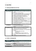normas técnicas de producción integrada champiñón - Embrapa - Page 6