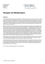 Rezepte-mit-Wildkraeutern?so=1