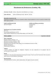 Eboulement de Derborence (Conthey, VS) - admin.ch