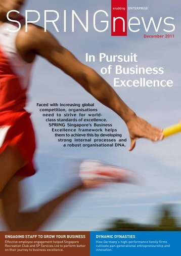 In Pursuit of Business Excellence - Association of Consulting ...