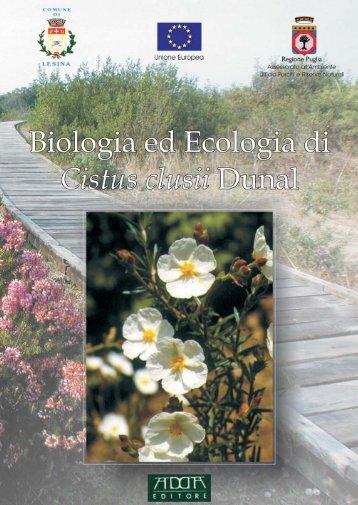Cistus clusii - Centro Studi Naturalistici ONLUS
