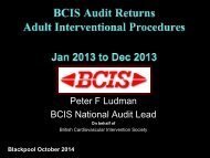 BCIS_Audit_2013_for_web_no_track_04-10-2014