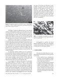 Visualizar PDF - Tecnologia em Metalurgia, Materiais e Mineração - Page 4