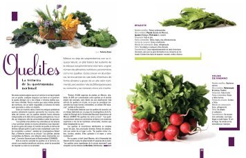 La terneza de la gastronomía nacional - diasiete.com