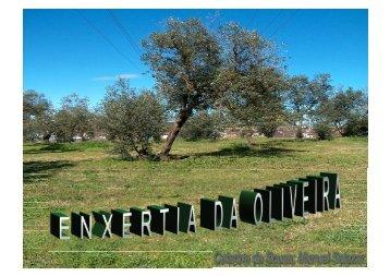 Enxertia da Oliveira (apresentação)