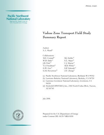 Vadose Zone Transport Field Study: Summary Report