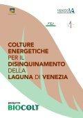 colture energetiche per il disinquinamento della laguna di venezia - Page 3