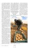 Crítica, la realidad del campo mexicano - UAM. Comunicación Social - Page 5